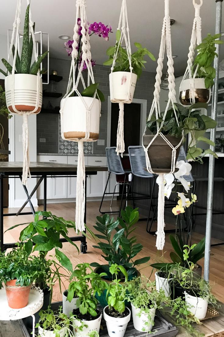 DIY Rolling Herb Garden. Growing herbs in your home. Indoor herb garden.