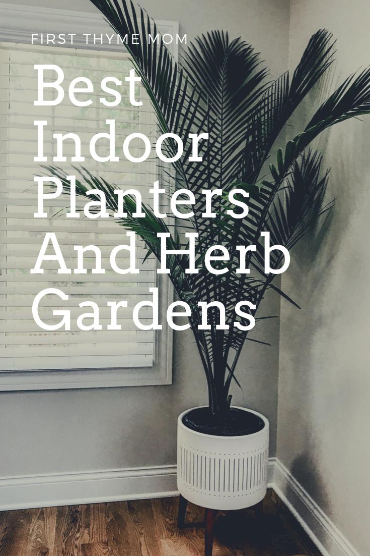 Best Indoor Planters And Herb Garden Ideas. Decorative Indoor Statement Planters And Gardens For Your Home. Ceramic and decorative floor planter for palm tree. West Elm designer floor planter. #indoor #planters # palm #tree