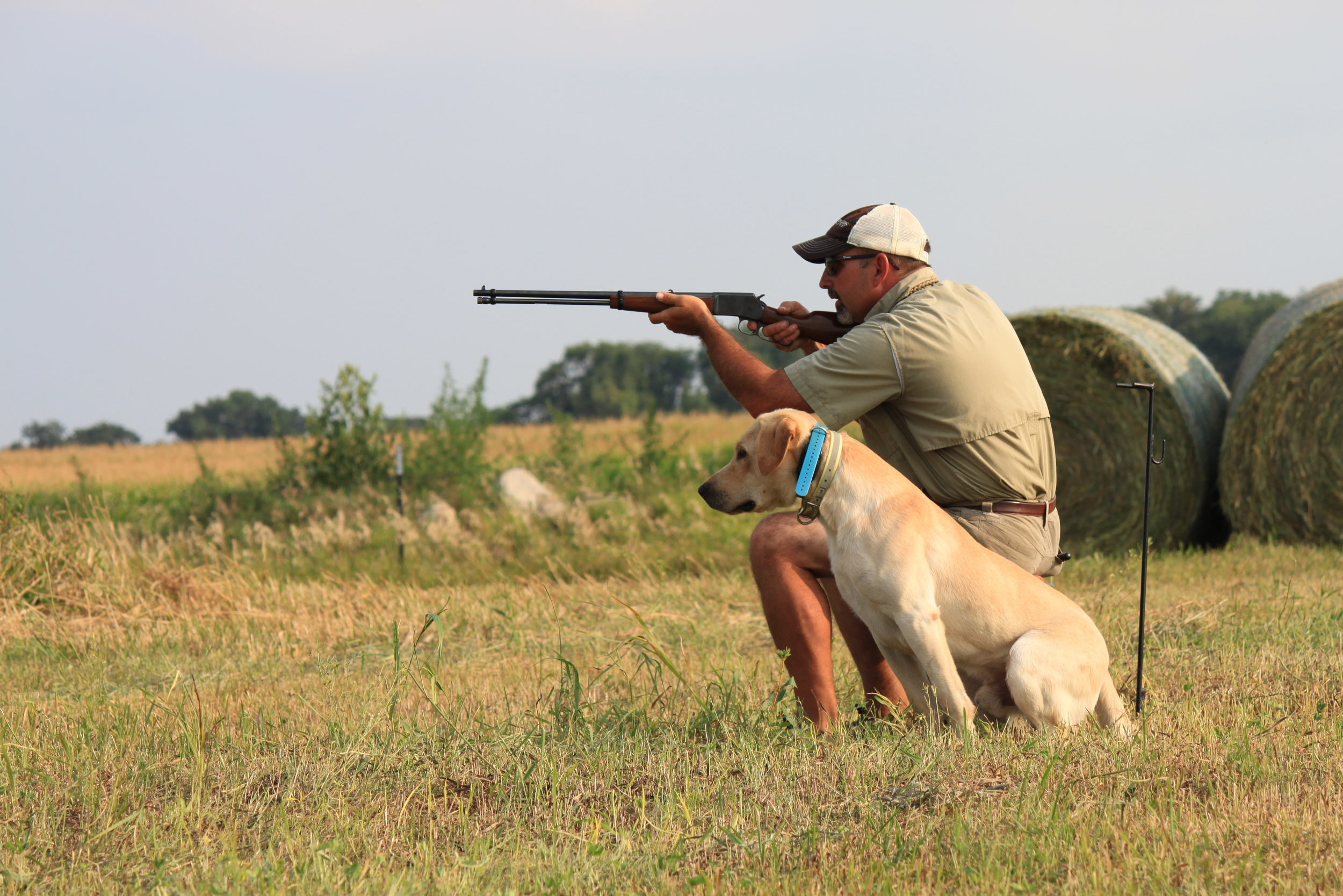 Northern Plains Retrievers   Training and Breeding Superior Gun Dogs That can do it All