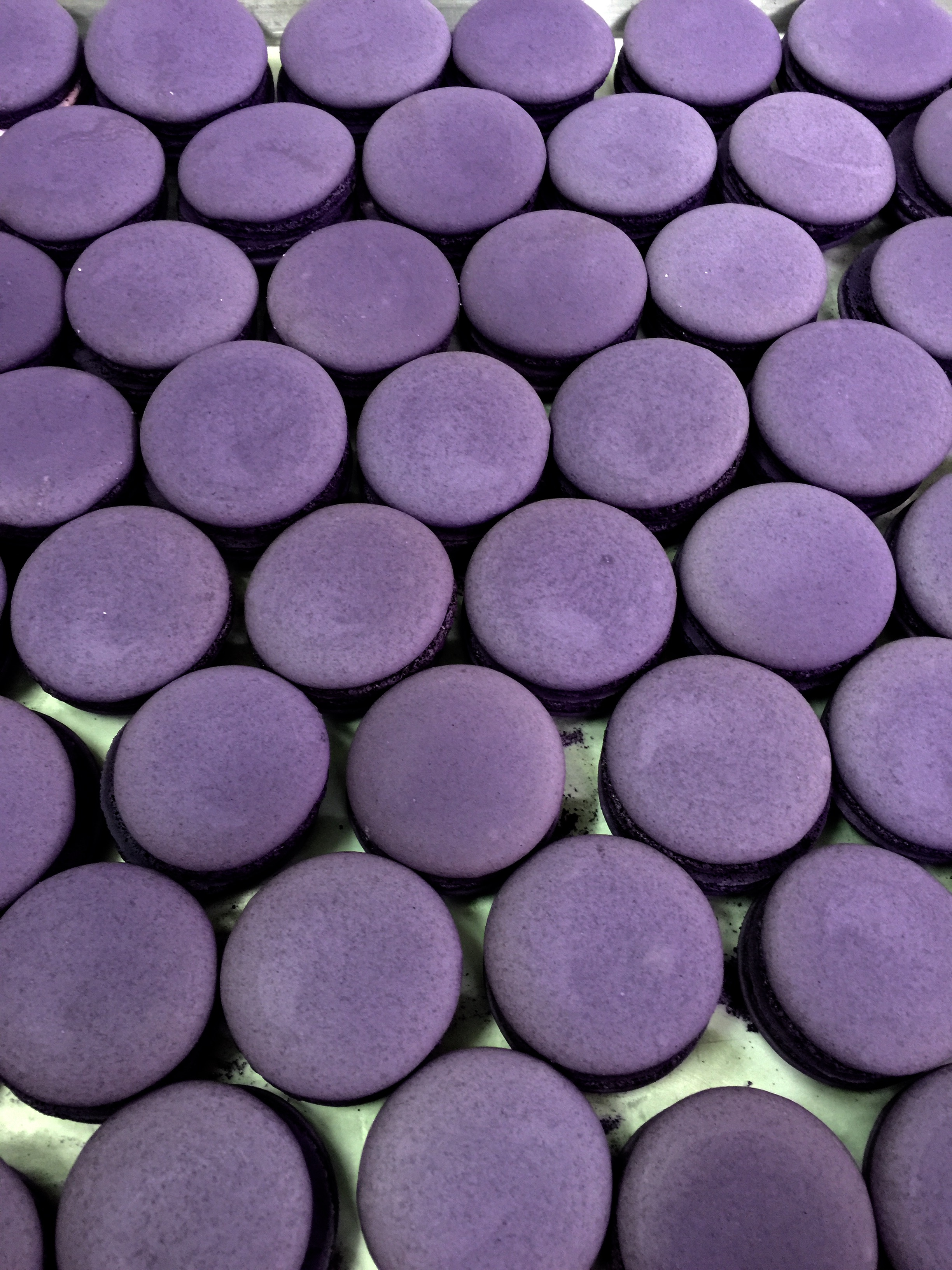 Macaron Purple.jpg