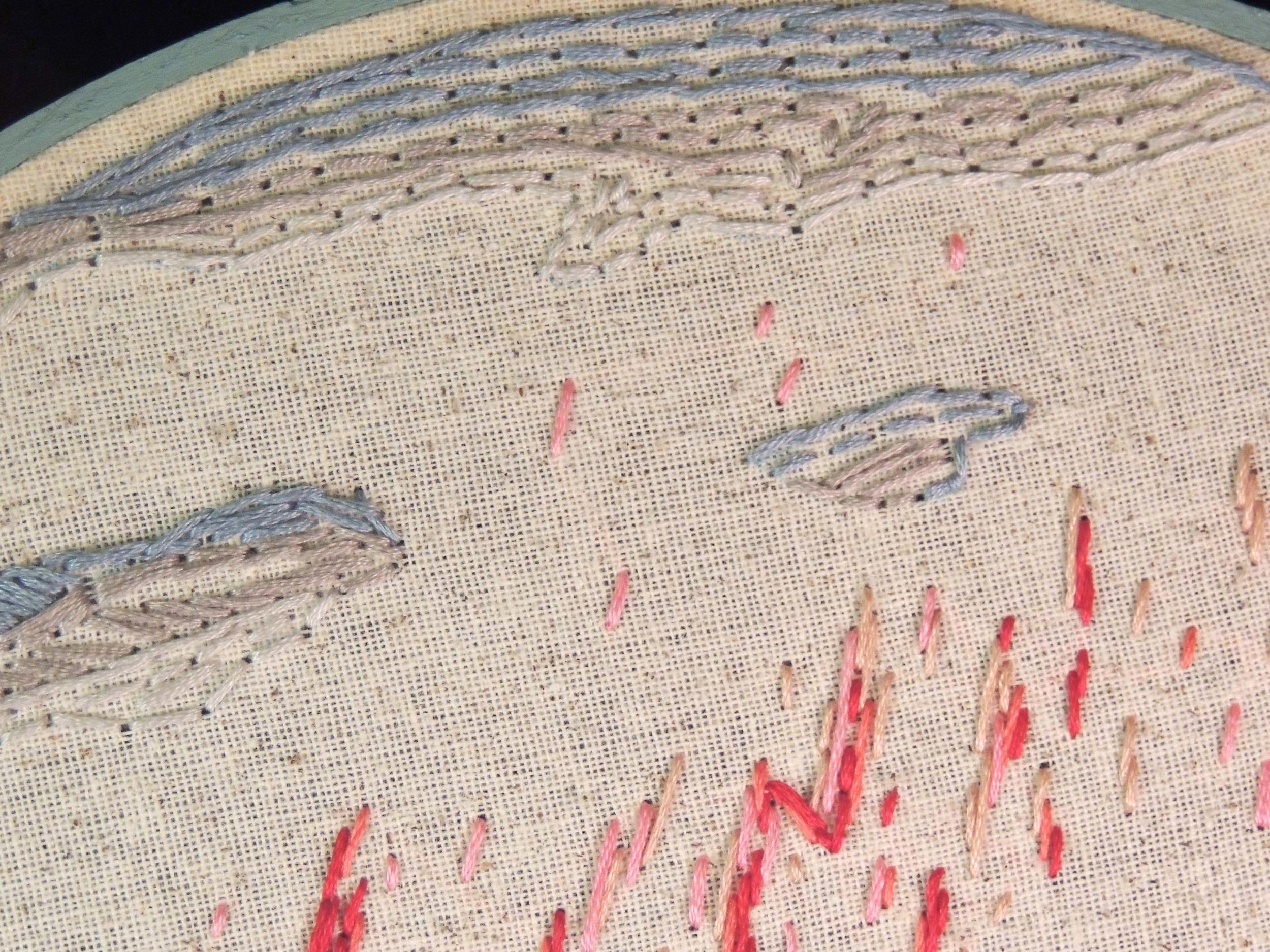 """Red Sprite Lightning"" Detail"