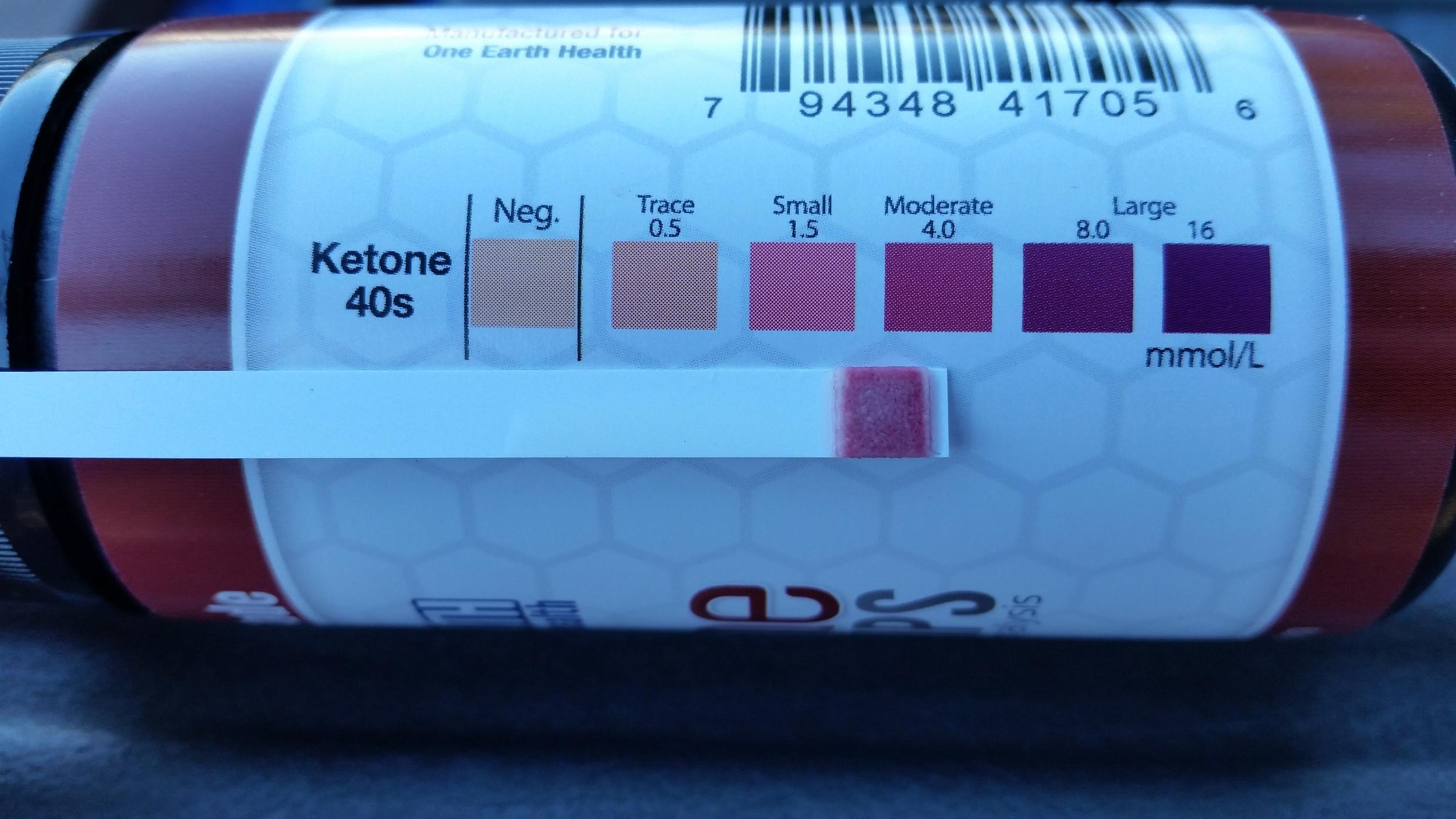 ketone test 0127-01