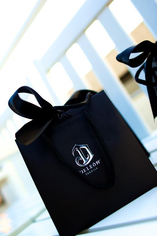 Gift Bag2.jpg