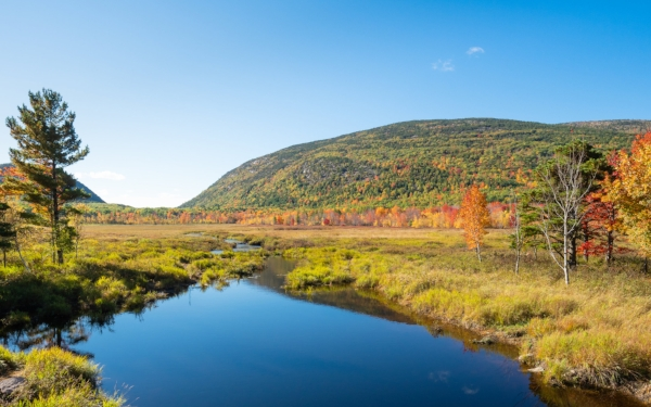 Arcadia National Park/ Photo Credit: John Westrock