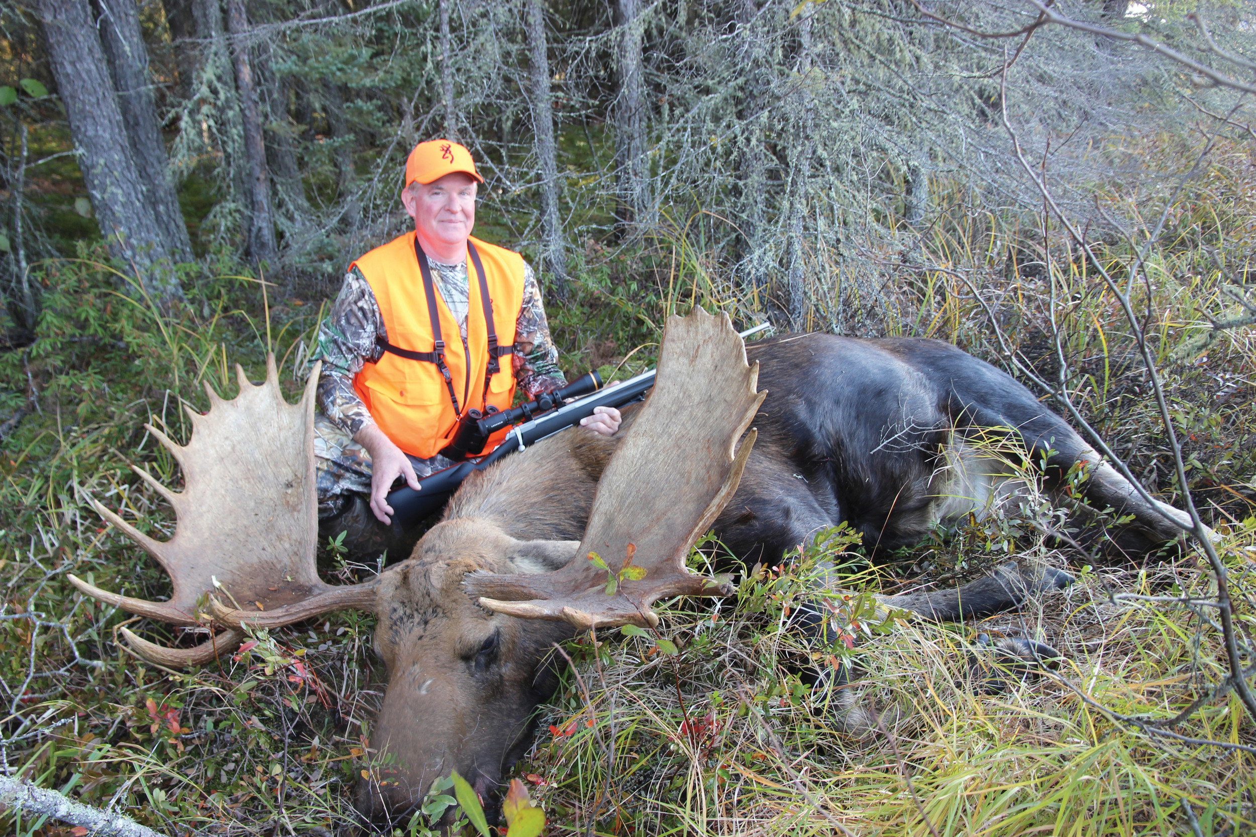55 Inch Manitoba monster moose