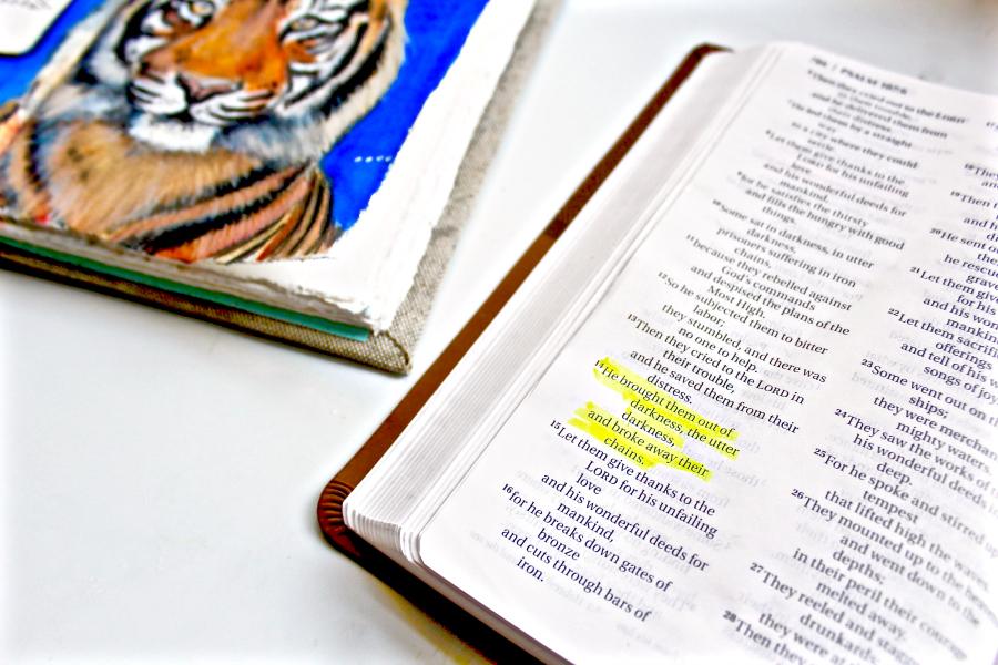 Psalm 107:14 - Sunday Sketchbook by Jennifer Frith