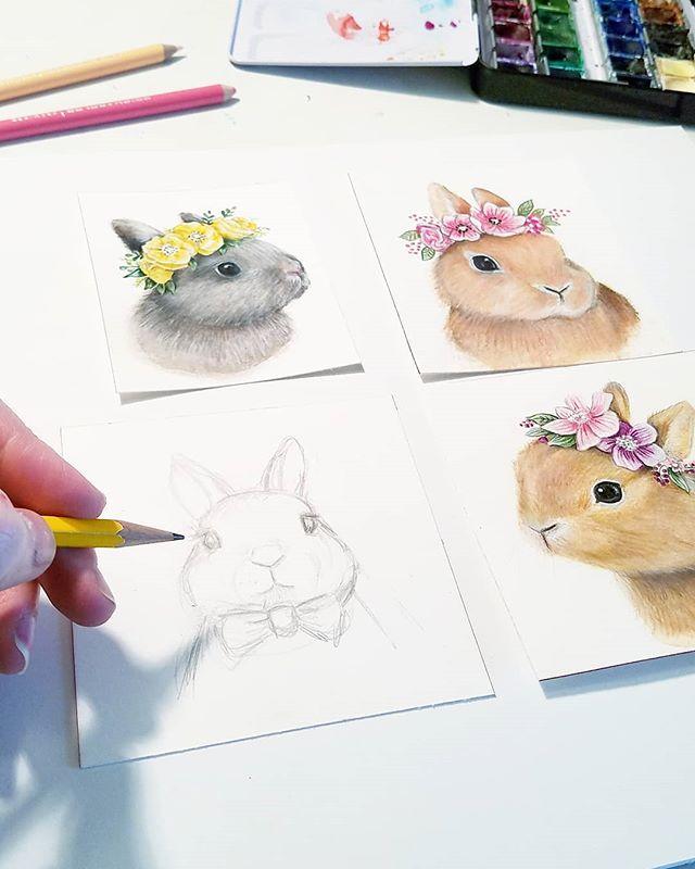 Bunnies on my brain �