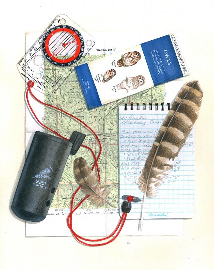 Spotted owl survey kit; artwork by Laurel Mundy.
