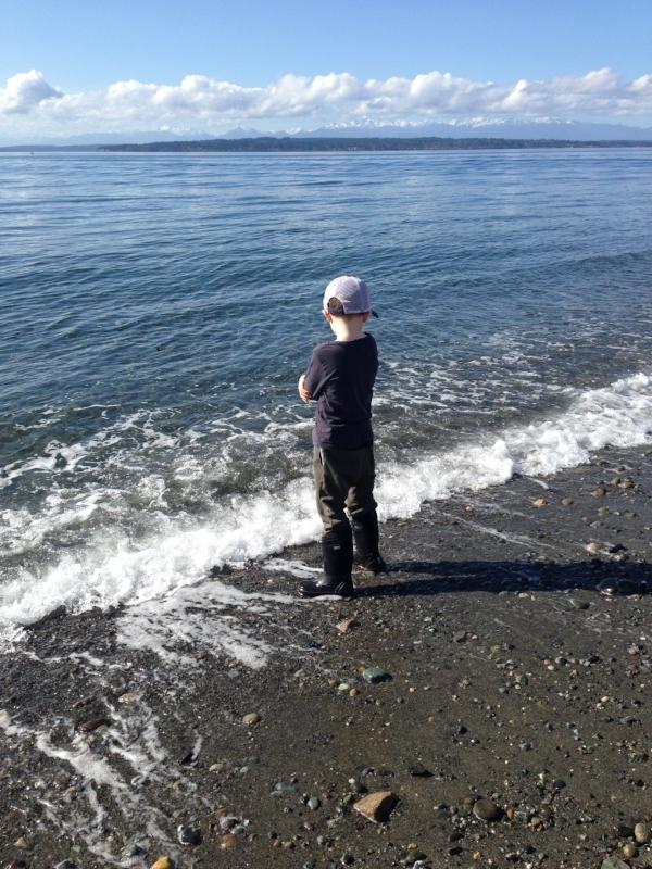 The boy loves the beach, birds or no.