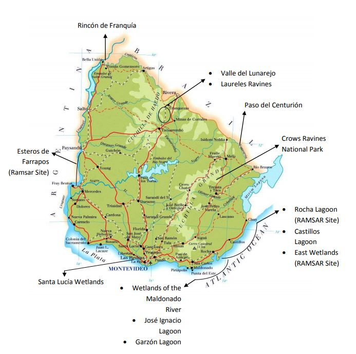 The Important Bird Areas (IBAs) of Uruguay that are integrated in the National System of Protected Areas.