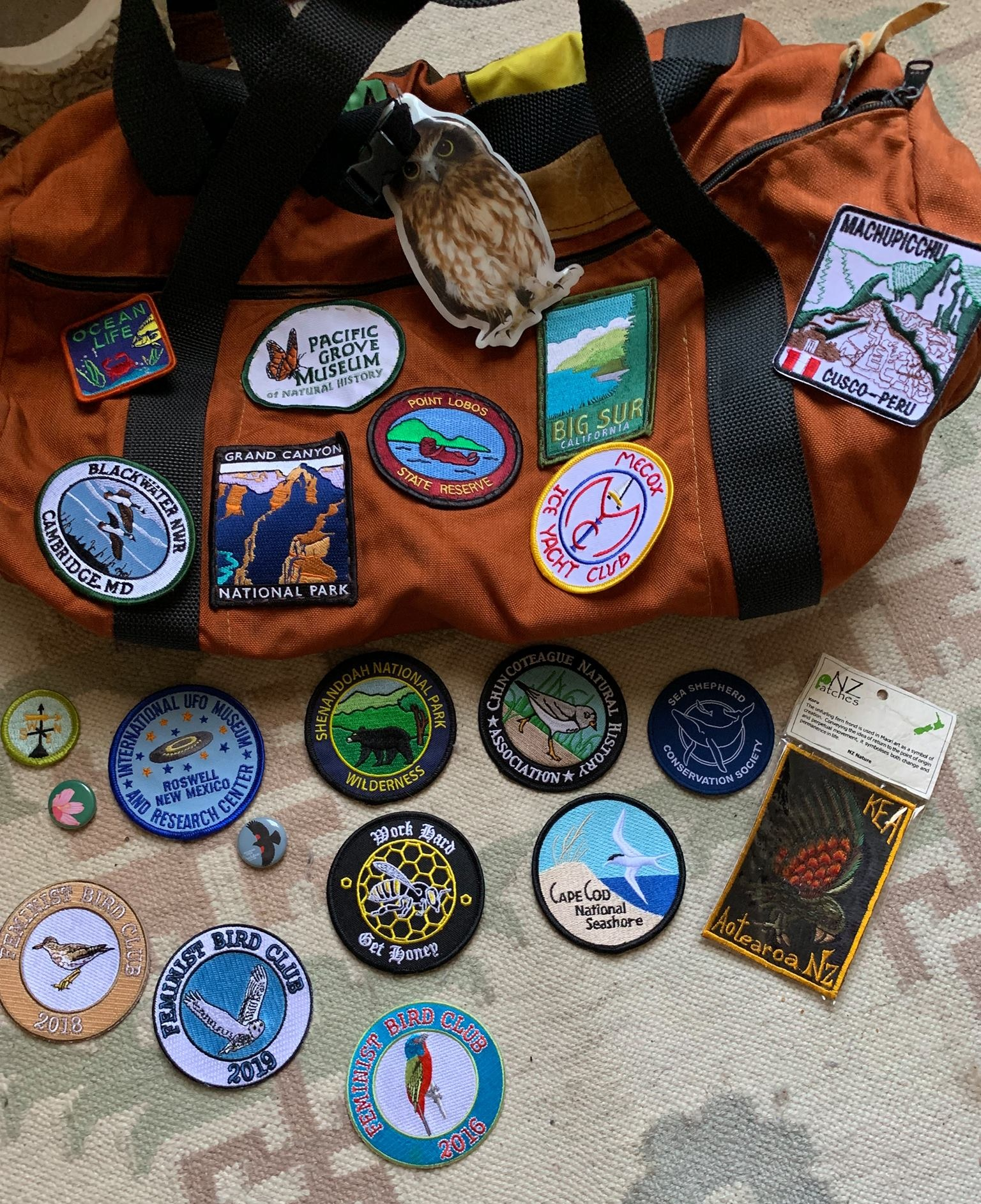 Molly Adams, founder of Feminist Bird Club (FBC) pin and patch collection, including 3 from FBC (bottom left).