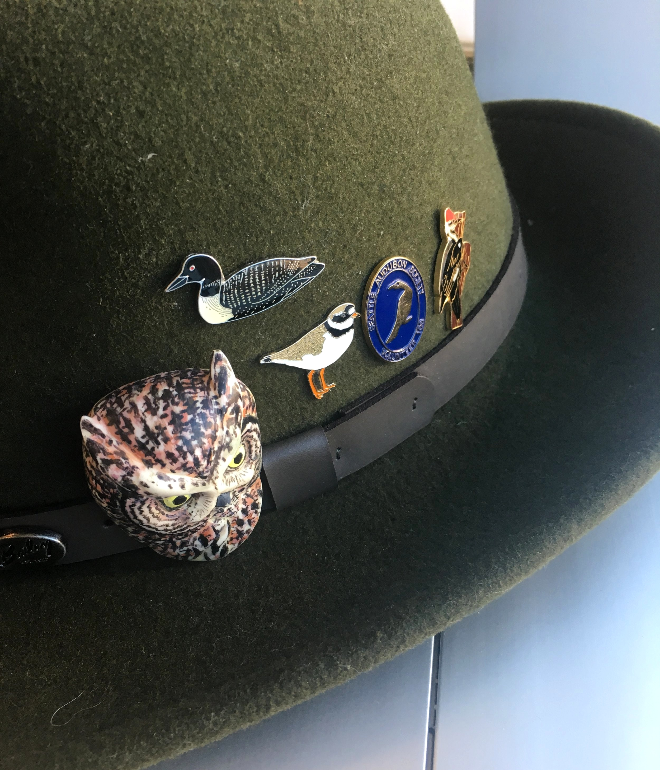 My hat pins: Western Screech Owl carved by my dad,  Tony Angell . The Common Ringed Plover is from the  Minsmere Nature Preserve  gift shop, in Suffolk, UK, run by the Royal Society for the Preservation of Birds. The Seattle Audubon pin is for my completion of 100 hours of volunteer service, now far surpassed (I'm closer to 500, but nowhere near Izzy's 1000 hours!).