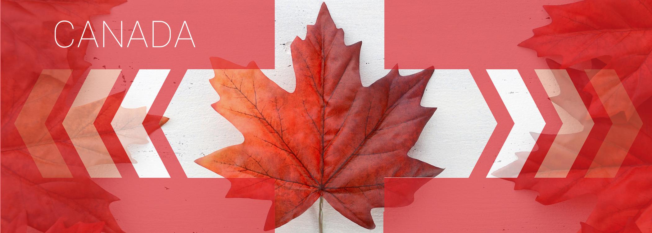canada leaf.jpg