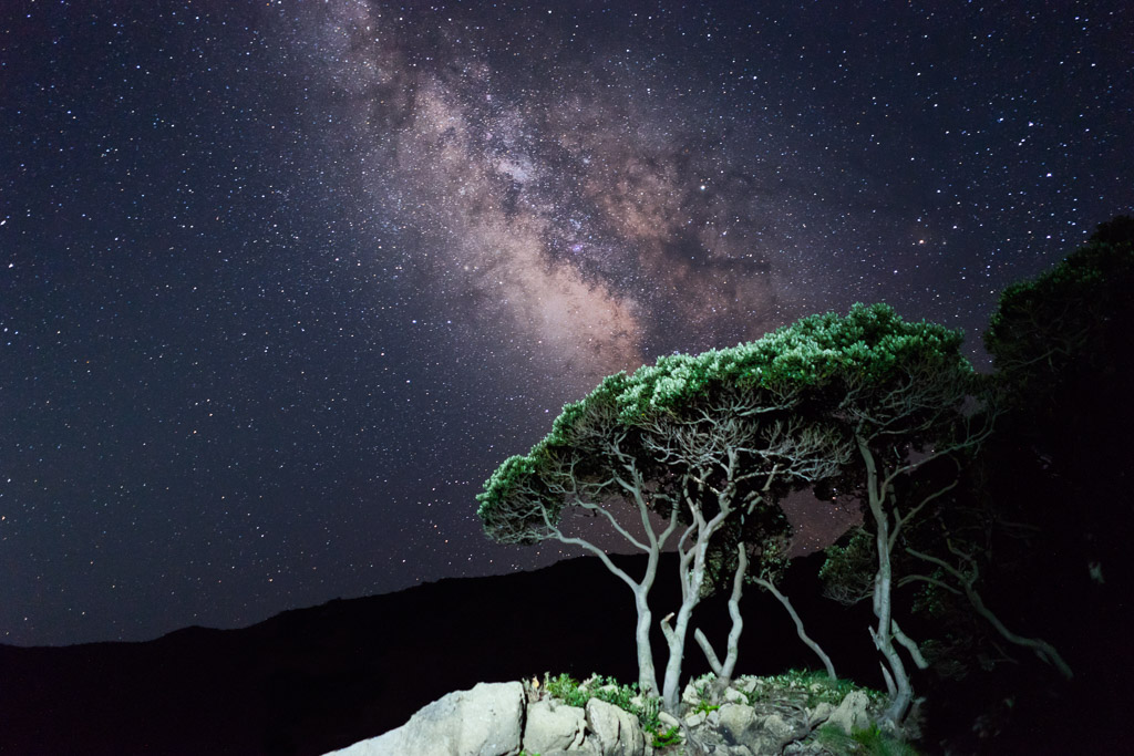 Perfect Dark Sky Conditions, Yakushima, Japan
