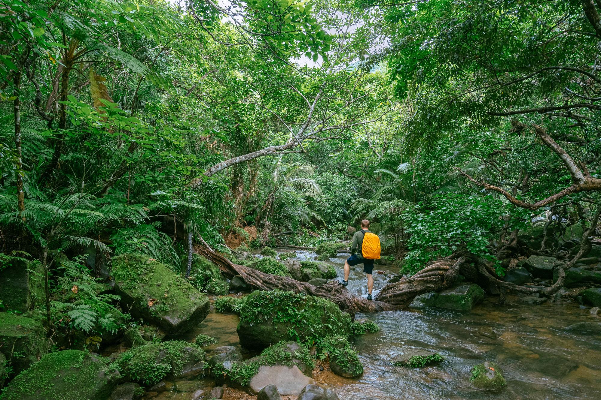 Adventure, anyone? Iriomote Island