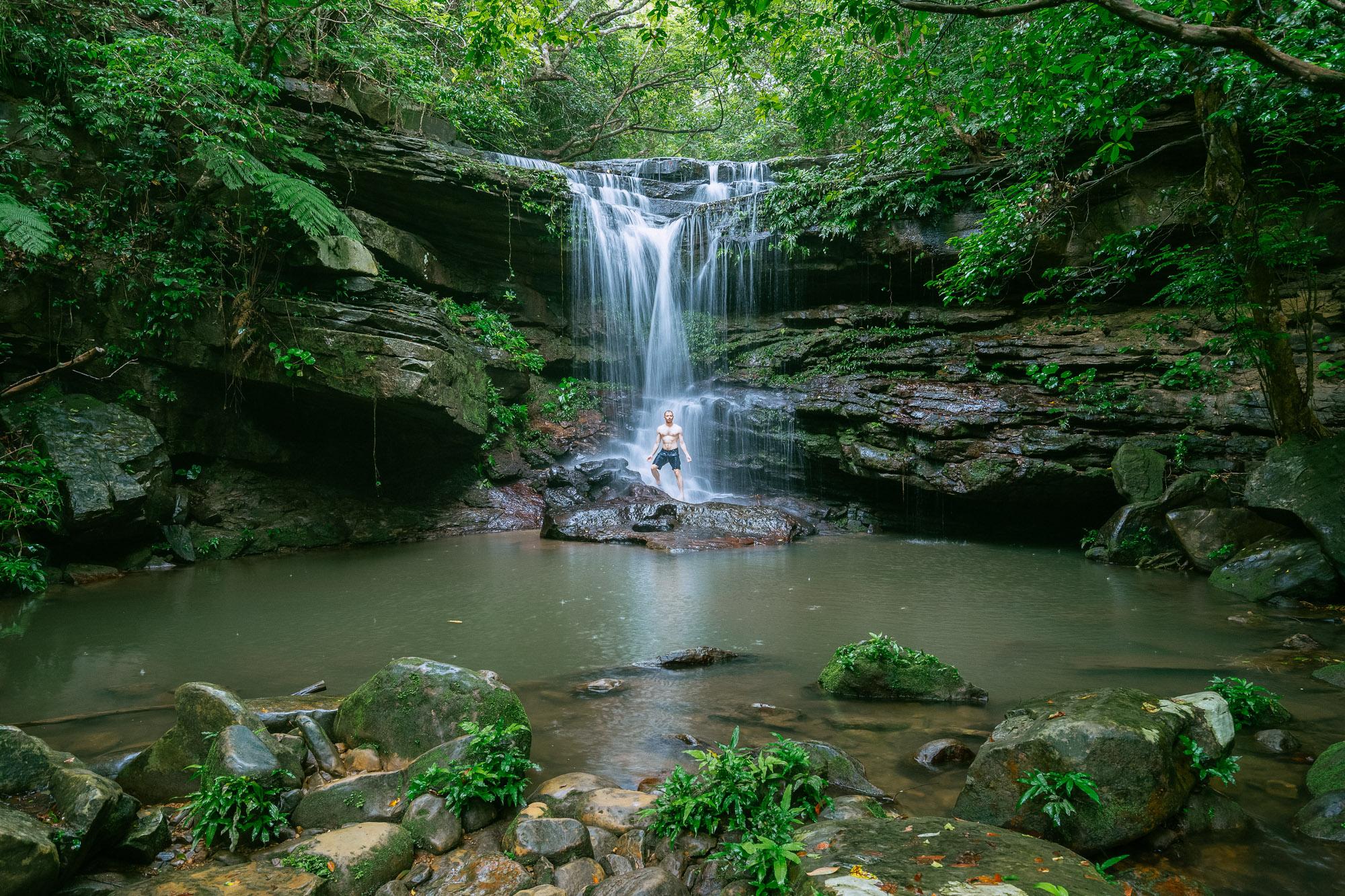 Take a Jungle Shower
