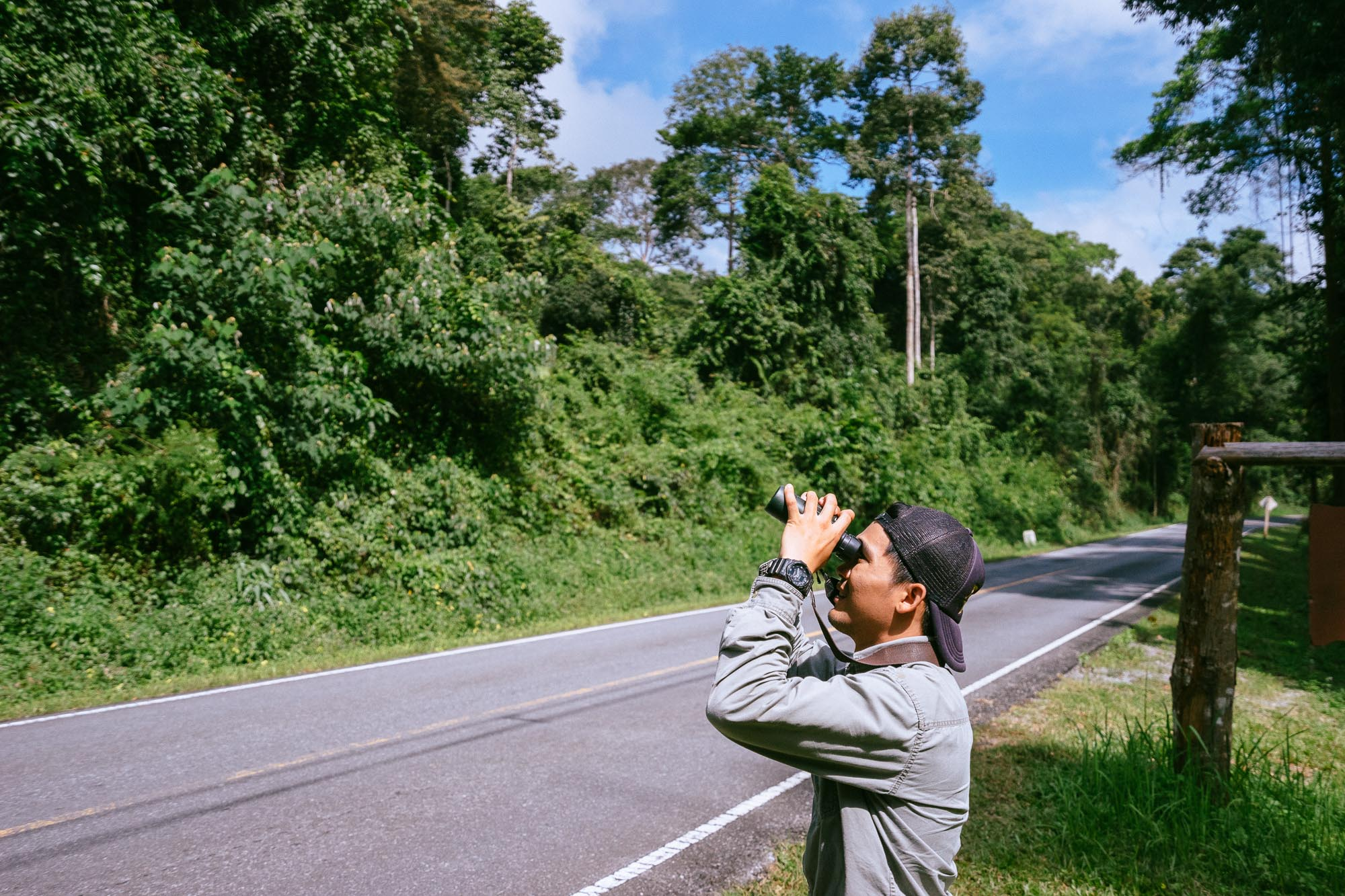 Searching for Wildlife, Khao Yai National Park