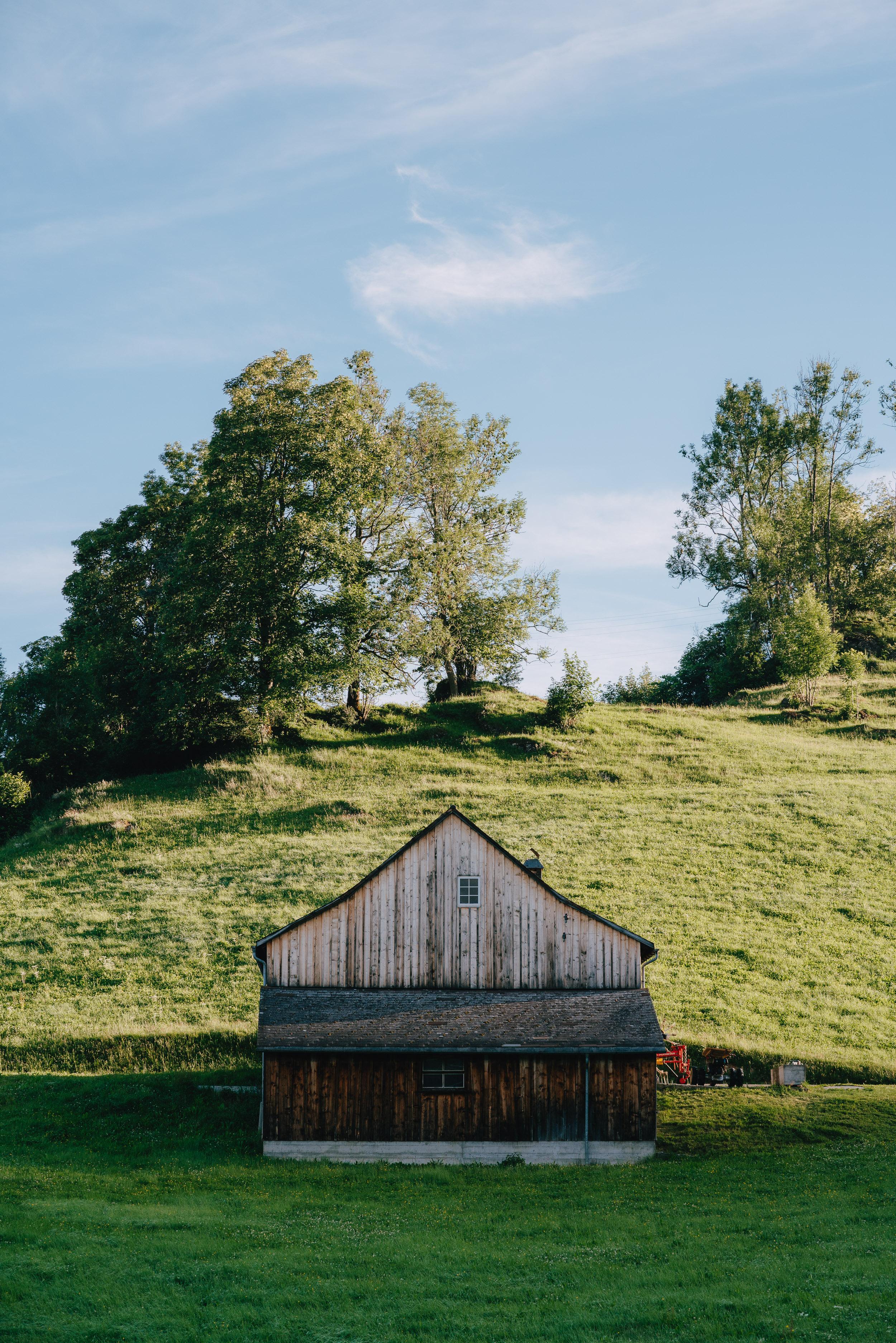 Switzerland Wide-26.jpg