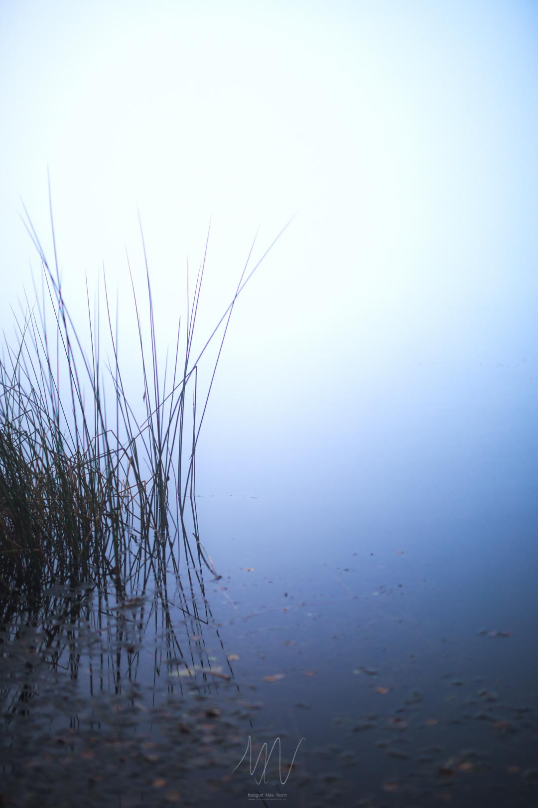 IMG_9319-Redigera.jpg