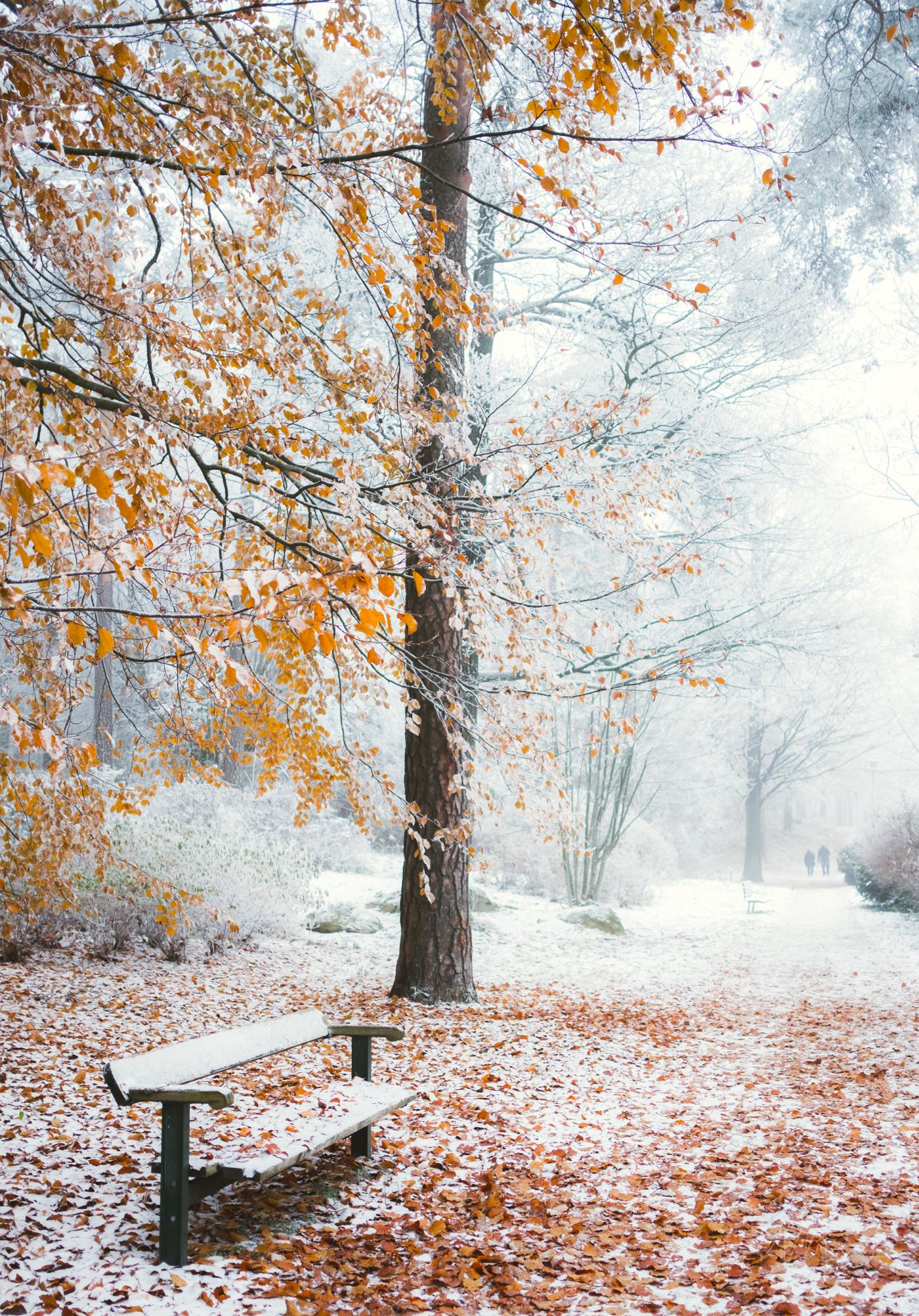 Naturfoto_Annelundsparken_max-norin-26-Redigera.jpg