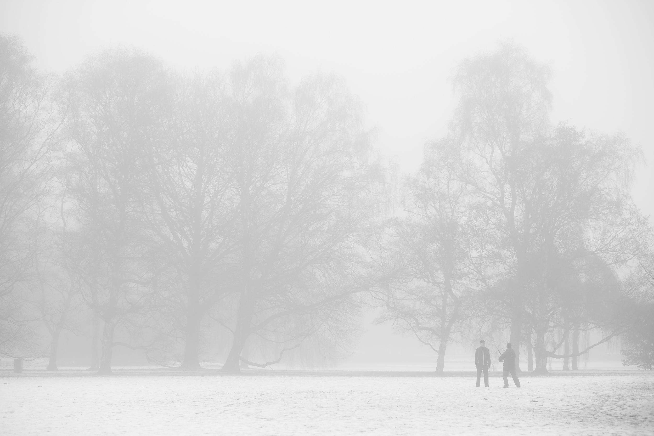 Winterfog-7160.jpg