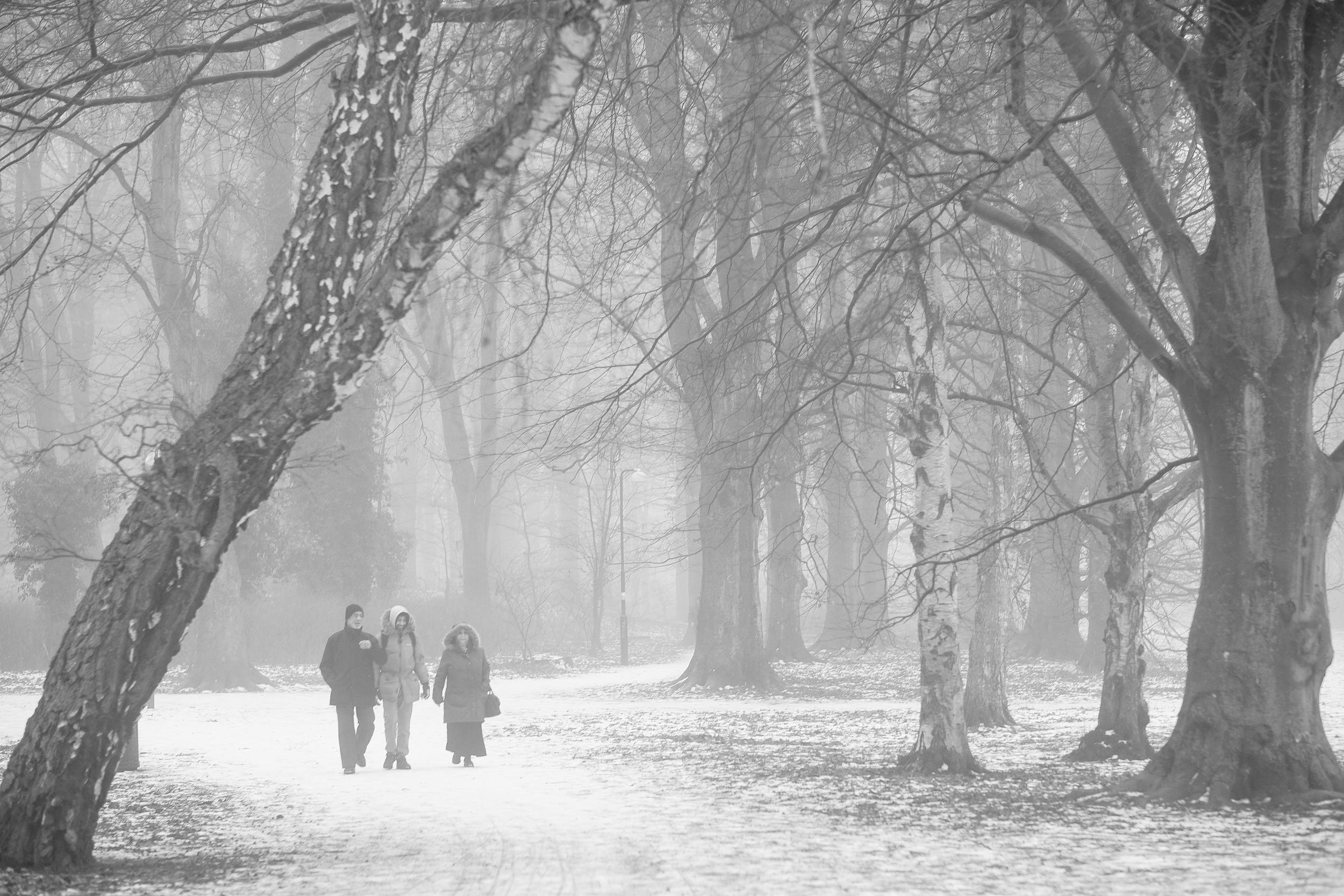 Winterfog-7235.jpg