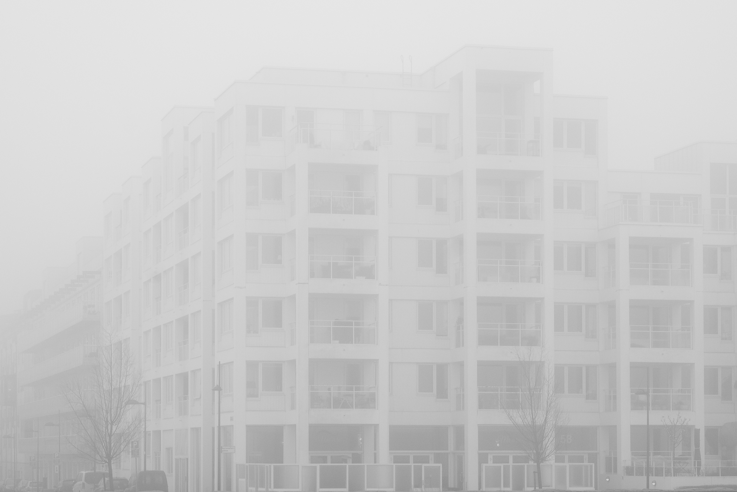 Winterfog-7612.jpg