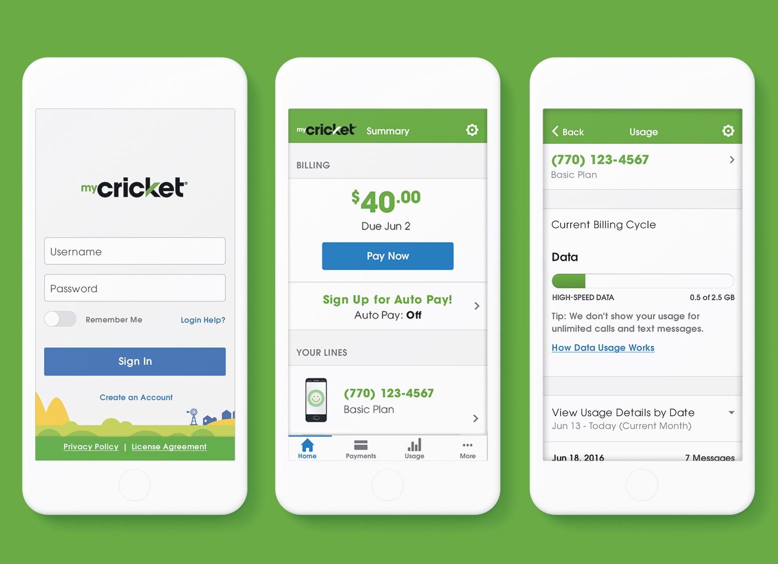 myCricket App — Jeremy Dickens