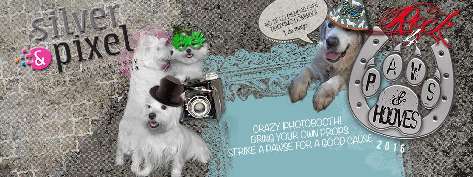 Te esperamos el domingo! See you in the Loco Photo Booth!