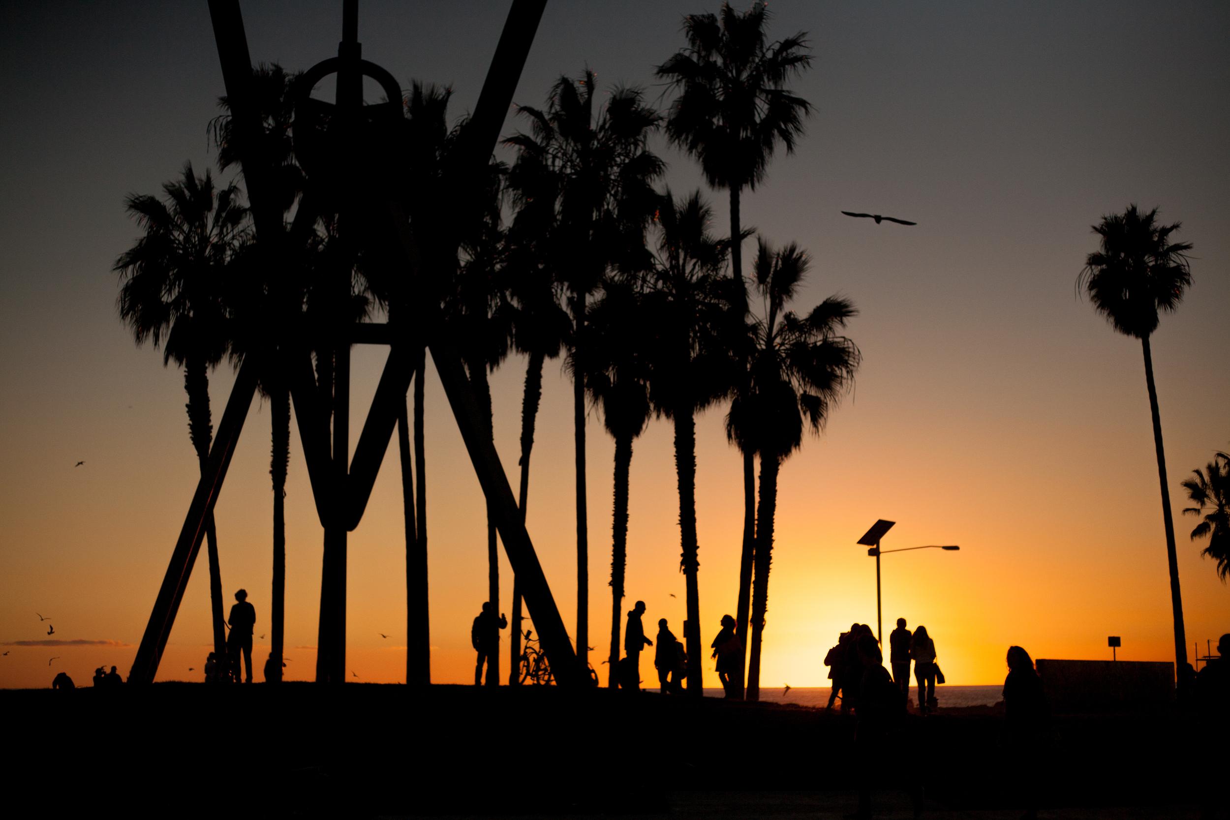 LA-7390.jpg