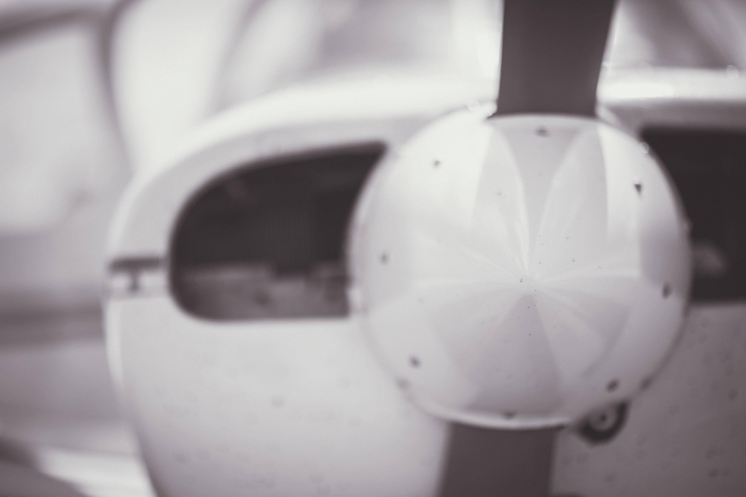 flying-9098.jpg