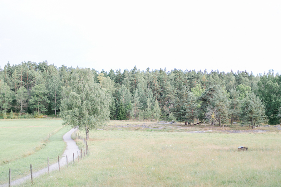 rebeccahansson.com-wedding-Elin-and-Peder-august-13th-2016-(845).jpg