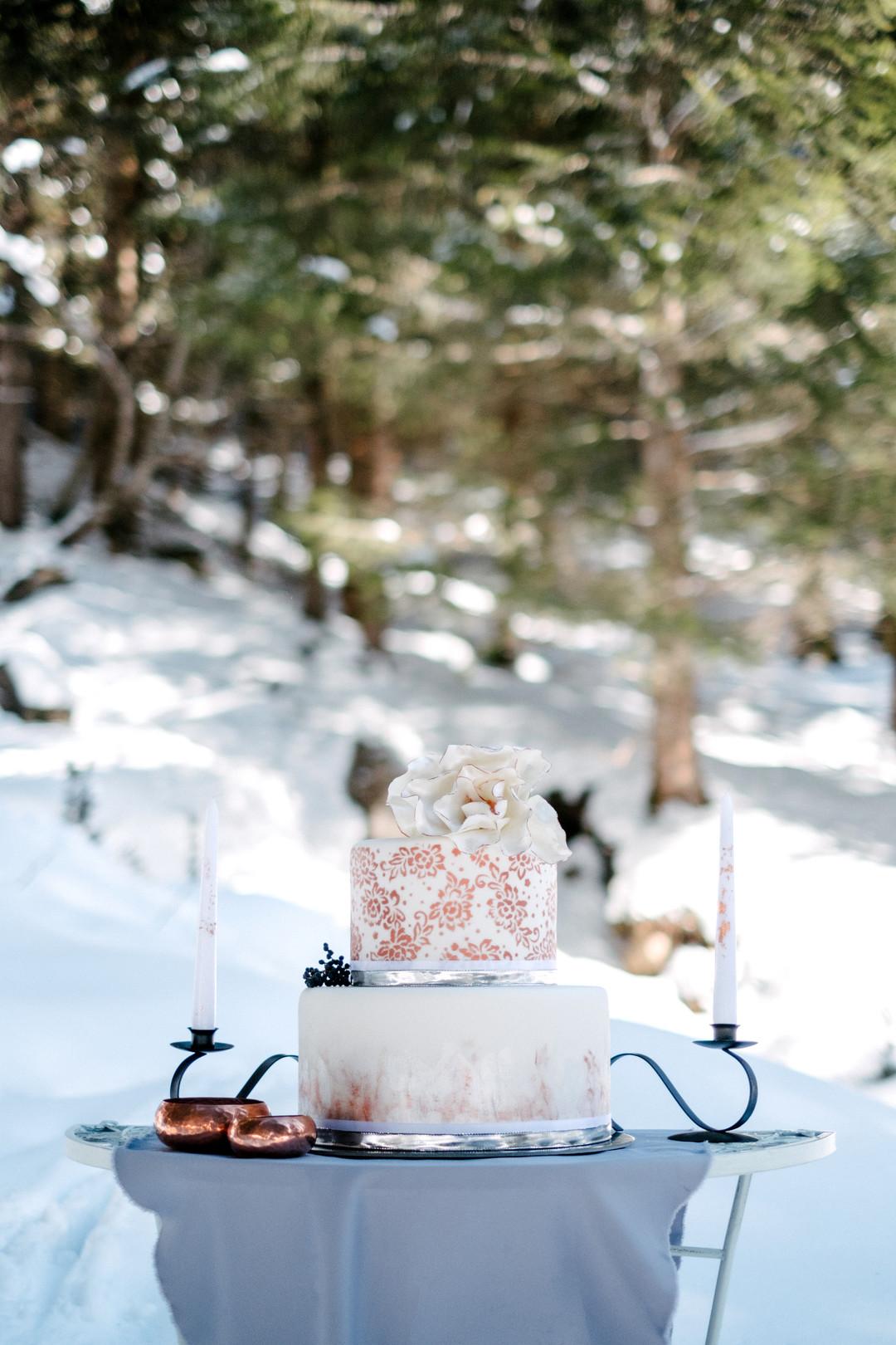 vinterbröllop+natur+tårta