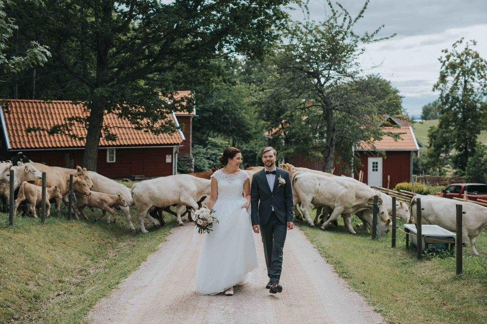 Jana Julian - Bröllopsfotograf i Gränna