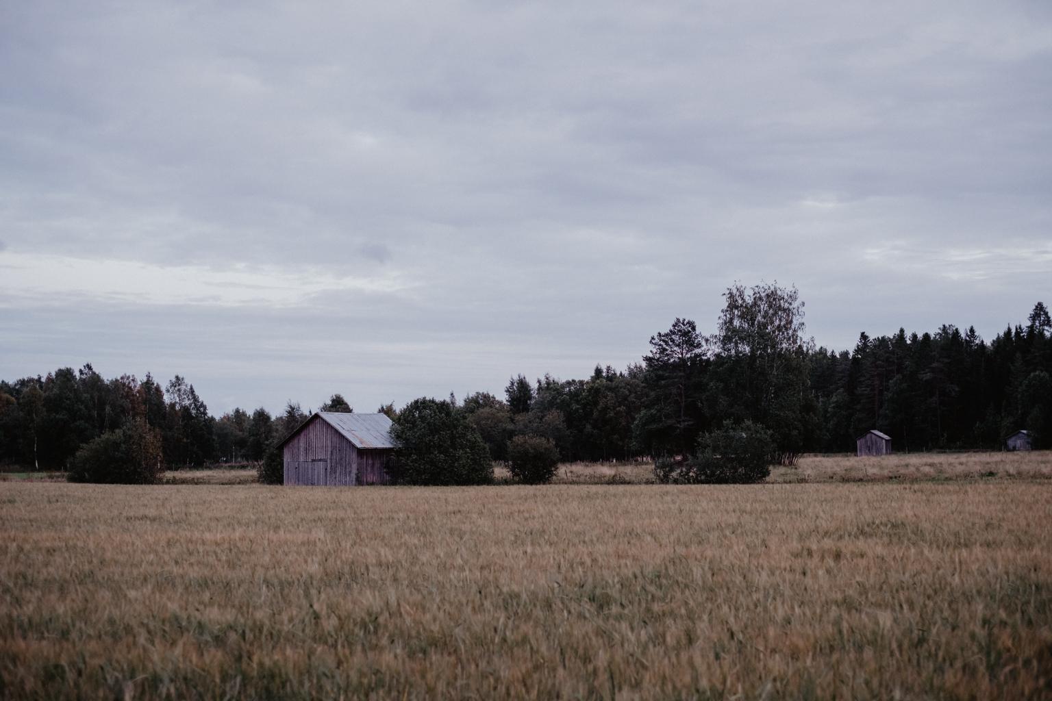 matildas tillvaro fotograf umeå-26046.jpg