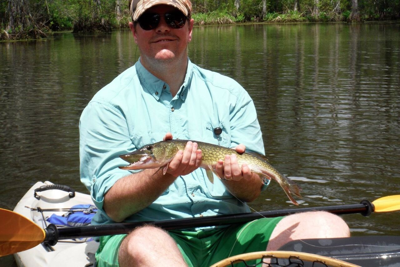 Chain pickerel on the Chick!
