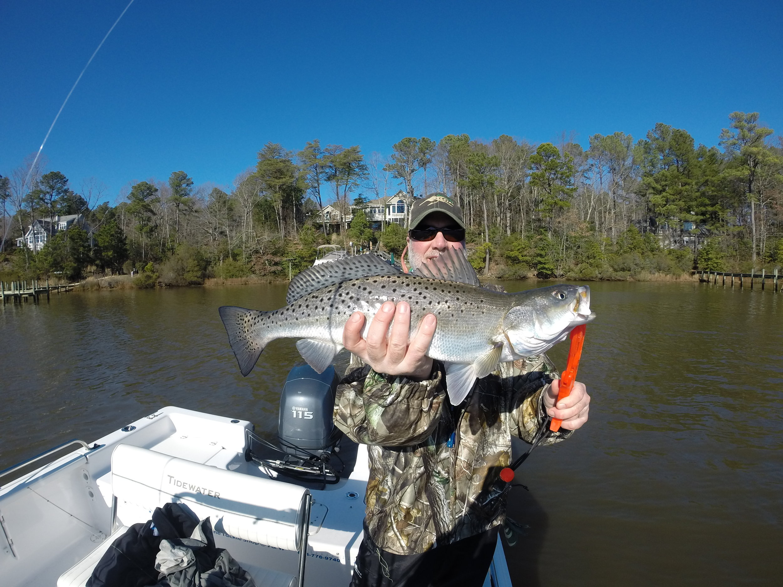 Winter trout fishery in Virginia!