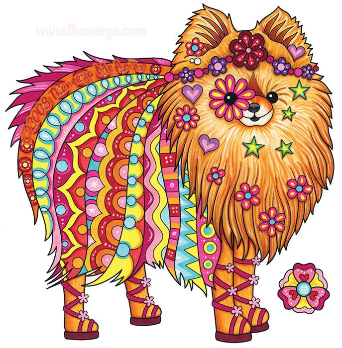 Chelsea Pomeranian by Thaneeya McArdle