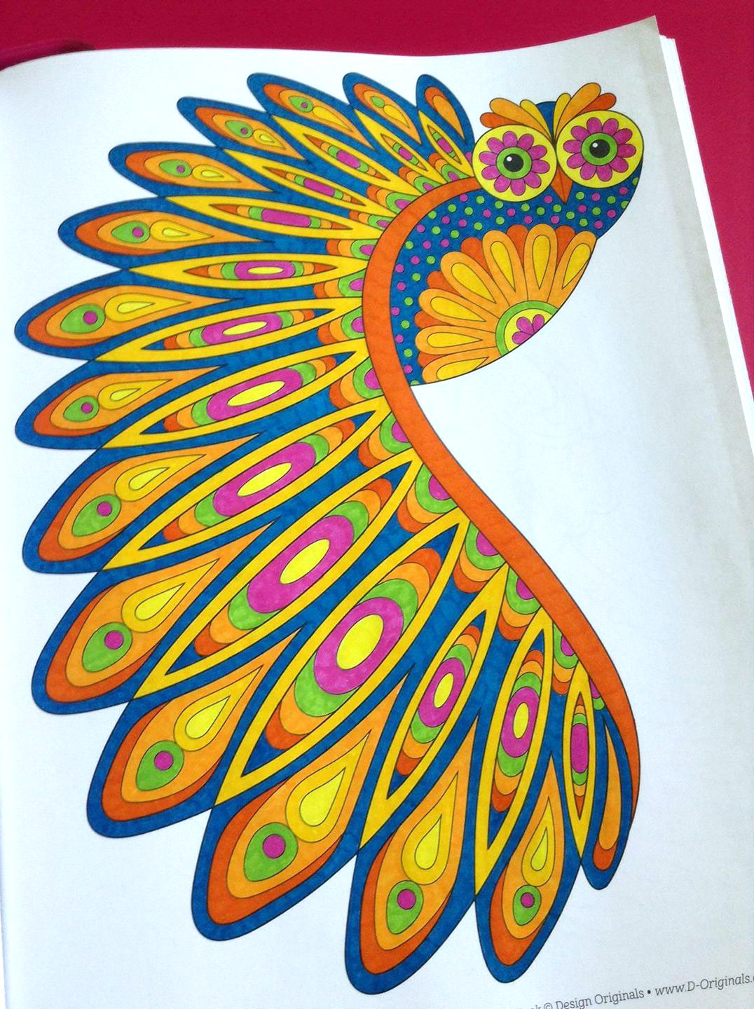 owl-coloring-page-2-by-Thaneeya-McArdle-colored-by-TammyM.jpg