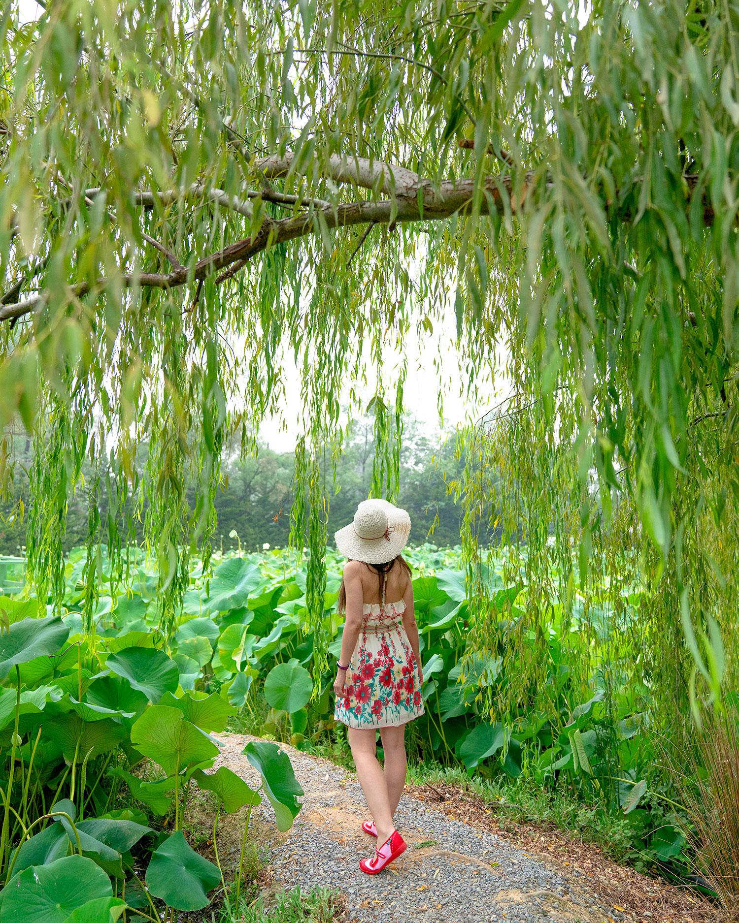 Artist Thaneeya McArdle at Blue Lotus Water Garden in Yarra Valley, Victoria, Australia