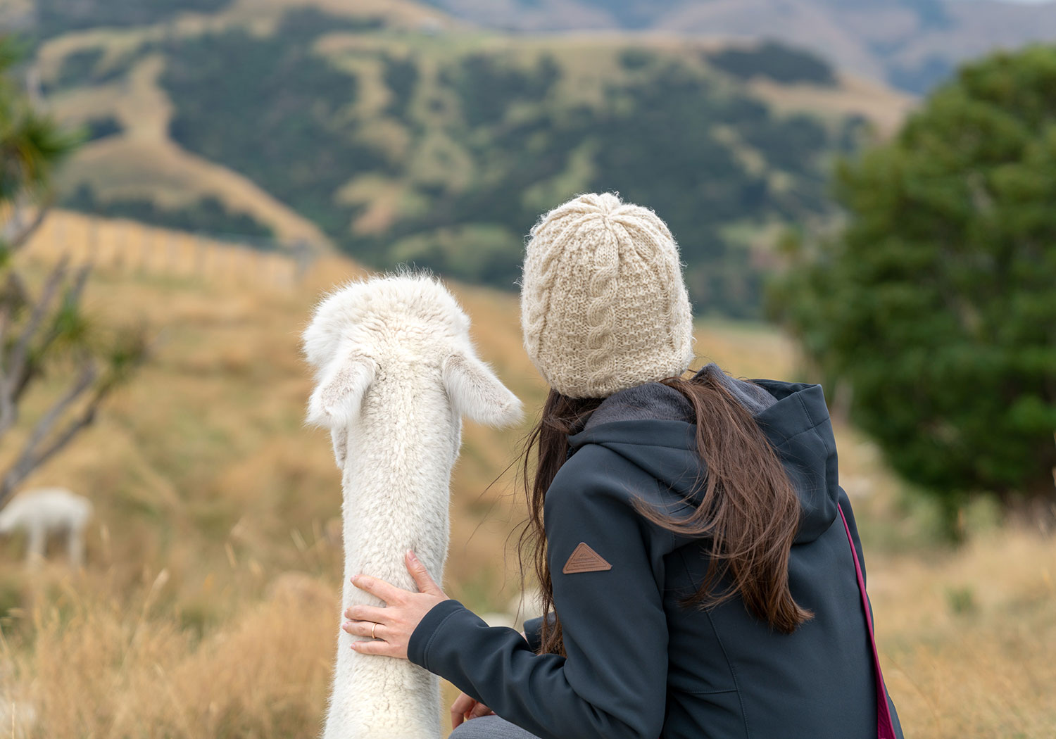 Thaneeya McArdle with an alpaca at Shamarra Alpaca Farm in Akaroa, New Zealand
