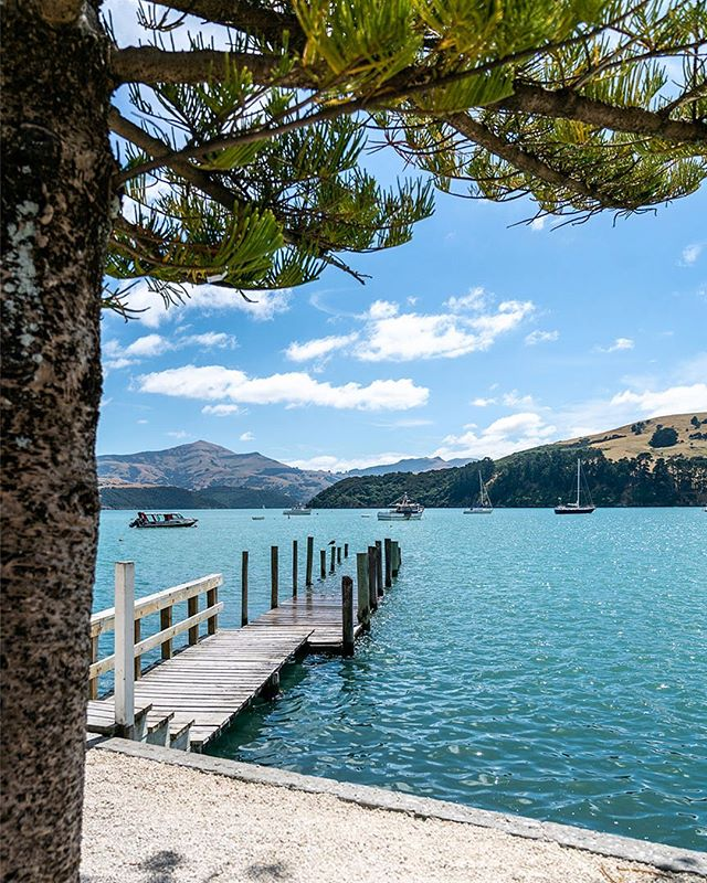 Akaroa on my mind on this sunny Sunday ~ I could sit and gaze at that beautiful blue water all afternoon!💙😎