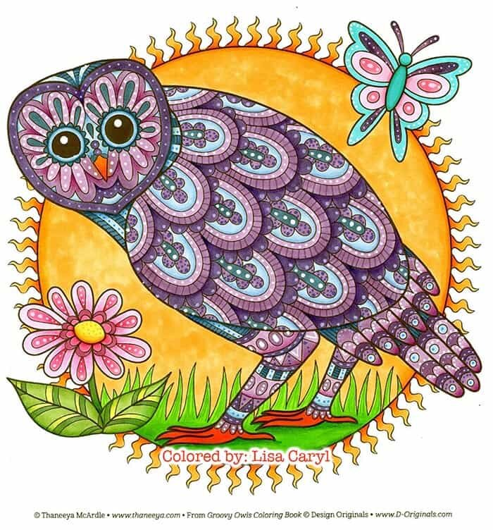 Colored Owl Art by Thaneeya McArdle