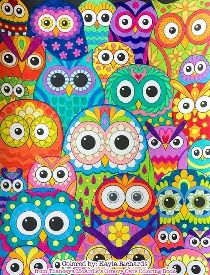 Colorful Crowd of Owls by Thaneeya McArdle