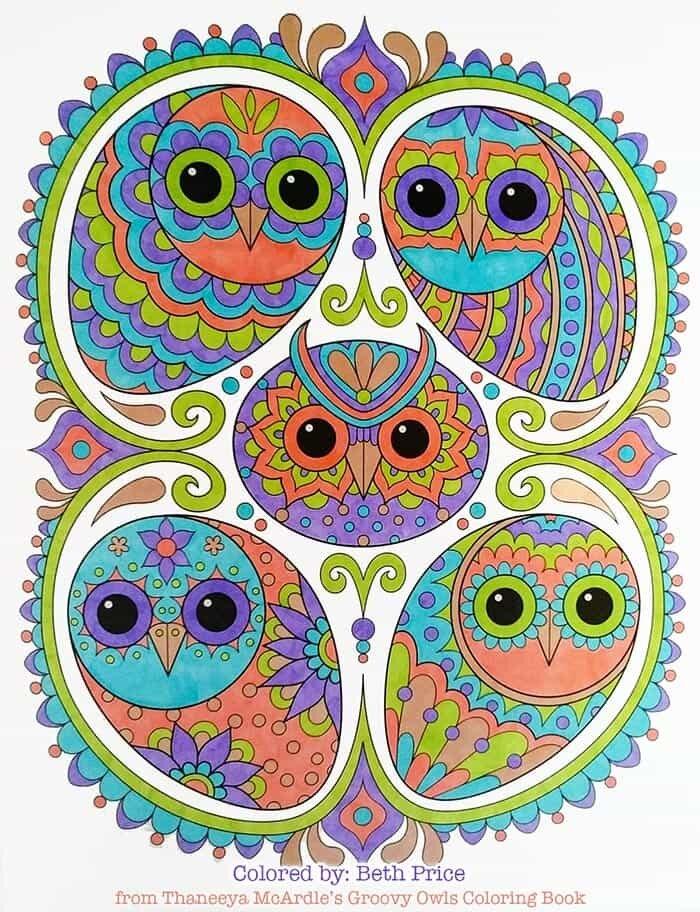 Colorful Owl Artwork by Thaneeya