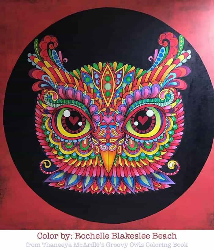 Colorful Owl Coloring Page Art by Thaneeya