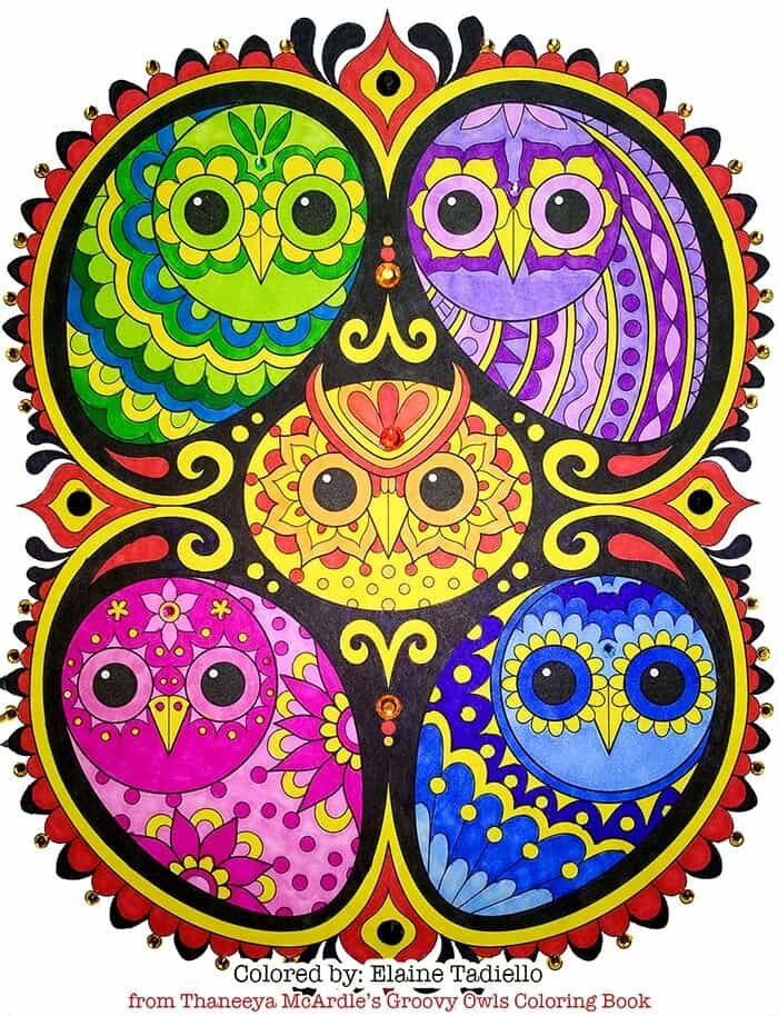 Colorful Owl Family Art by Thaneeya McArdle