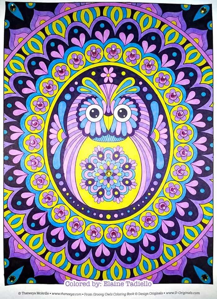 Colorful Owl Mandala Coloring by Thaneeya