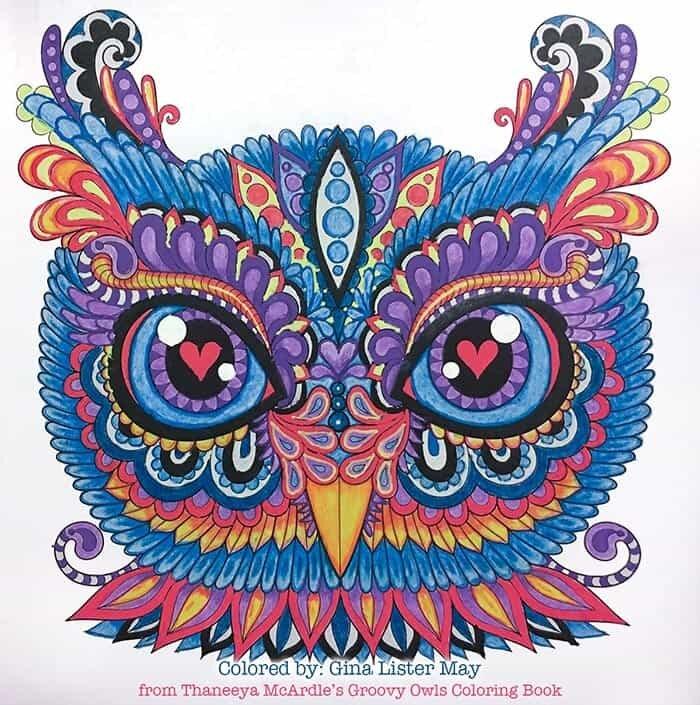 Colourful Owl Art by Thaneeya McArdle