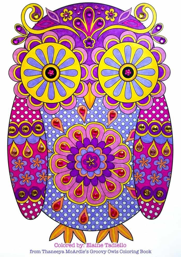 Colourful Owl Artwork by Thaneeya McArdle